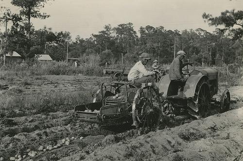 African American farmers