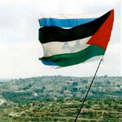 Israelis & Palestinians